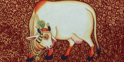 How can cow be a solution to Vastu defects of your home and office?